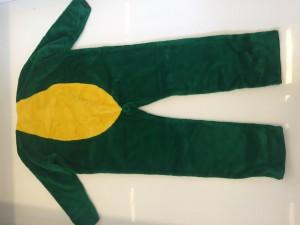 76a-Frosch-Maskottchen