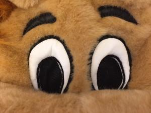 60p-Löwe-Kostüm