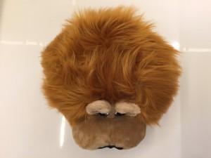 60p-Löwen-Kostüme-Lauffigur