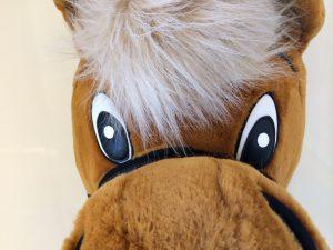 Pferd-Kostüm-99a