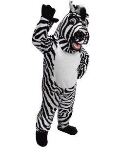 zebra-kostu%cc%88m