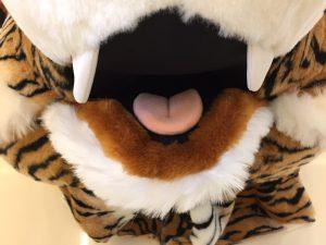 104a-tiger-kostueme