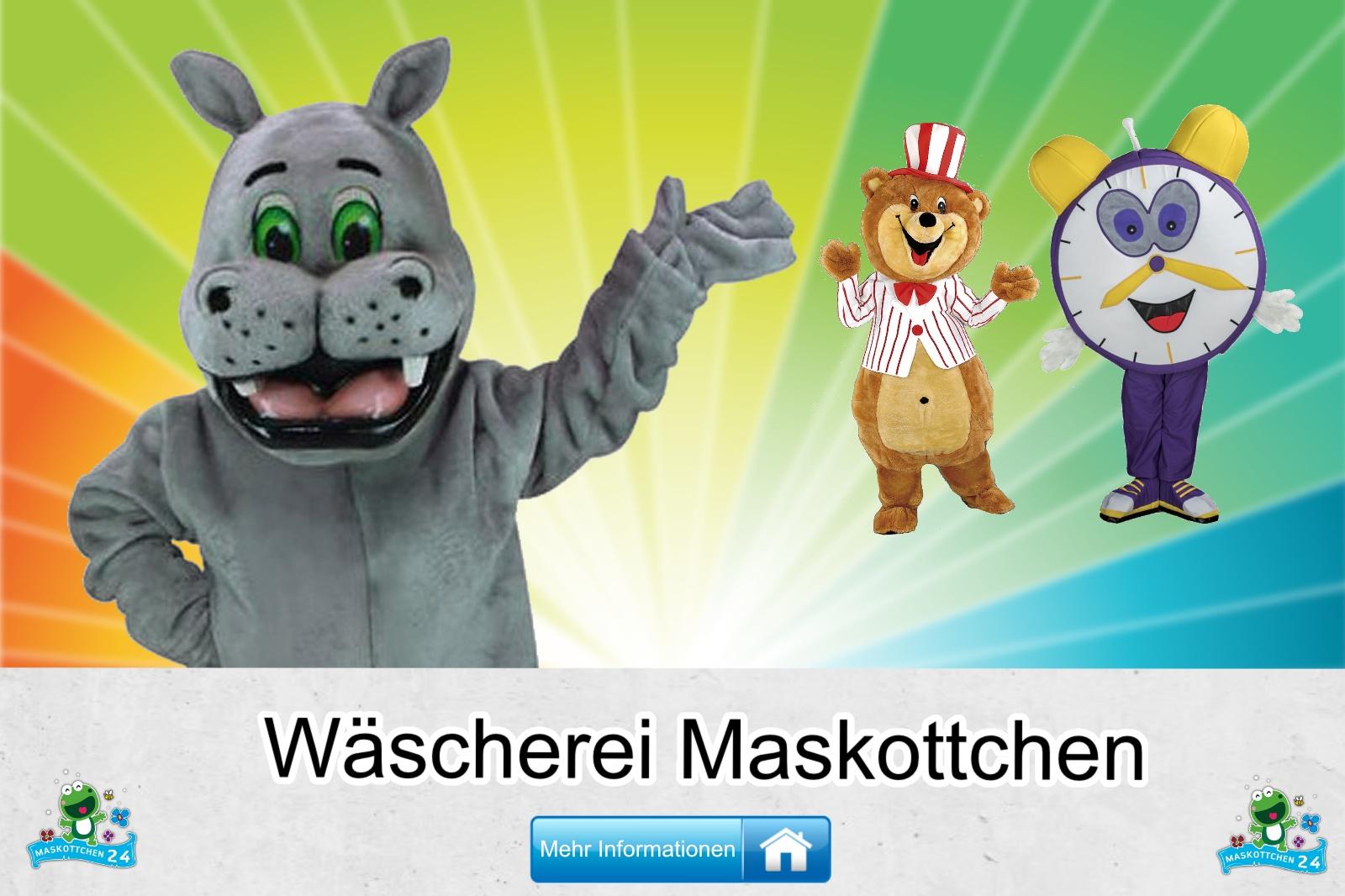 Wäscherei Kostüme Maskottchen, günstige Produktion / Herstellung